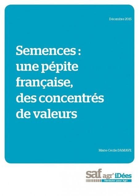 Semences : une pépite française, des concentrés de valeurs - Saf agr'iDées | Graines de doc | Scoop.it