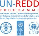 Encuesta sobre la incorporación de la perspectiva de género en Programas ONU REDD | Igualdad de genero | Scoop.it