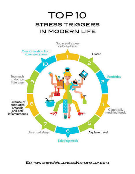 Top Ten Stress Triggers in Modern Life — Dr. Doni - Naturopathic Doctor | Stress | Scoop.it