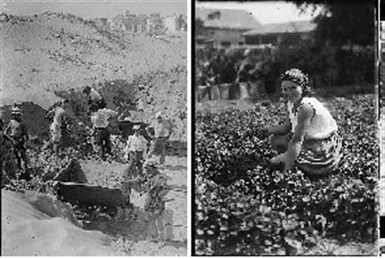 Israel's History in Pictures: Photos as Historical Proof | British Genealogy | Scoop.it