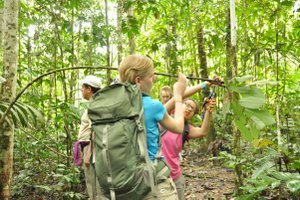 'Science' awards Yale rainforest class | Yale Daily News | CALS in the News | Scoop.it