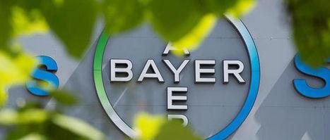 Quand Bayer se moque de la loi biodiversité | Apiculture, agriculture et environnement | Scoop.it