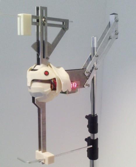 Impresión 3D. Colaboración con exposición en La Capella   Big and Open Data, FabLab, Internet of things   Scoop.it