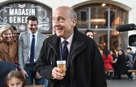« Il faut boire de la bière » rétorque Juppé à un élu qui s'inquiète des pesticides sur les vignes | Le vin quotidien | Scoop.it