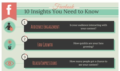 Facebook Analytics: The Only Guide You'll Ever Need | Ian Cleary | World's Best Infographics | Scoop.it