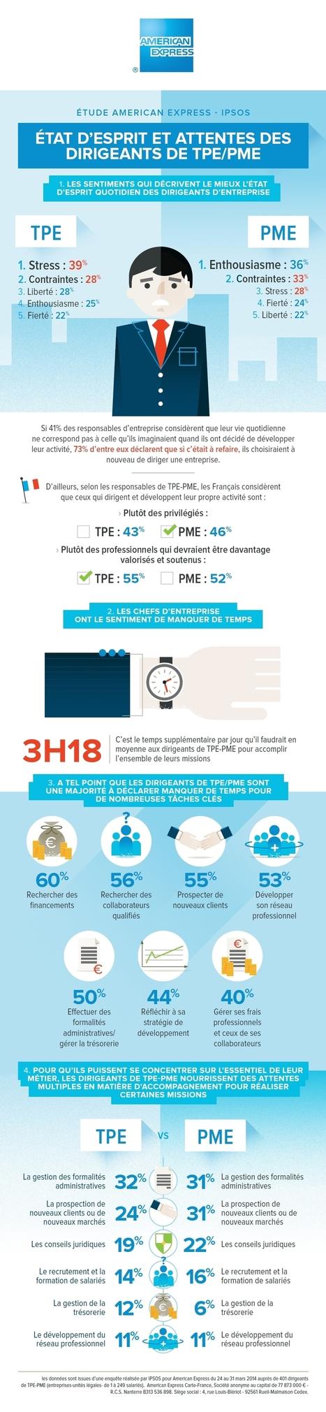Infographie | TPE & PME - un quotidien stressant, marqué par le ... - Finyear.com | Actualité Ressources Humaines PME PMI Lyon par Beemin Conseil | Scoop.it