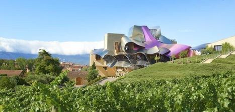 Decoding Spanish Wine Classifications   Madden Beverage   Wine Geographic   Scoop.it
