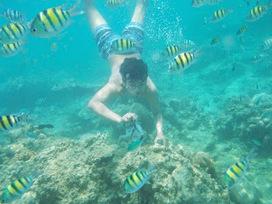 Agen wisata pulau tidung | pulau tidung | Scoop.it