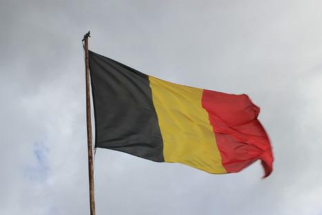 Partez à la conquête du marché de l'e-commerce belge !   Cours e-commerce   Scoop.it
