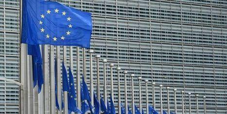 Perturbateurs endocriniens: le projet de réglementation de Bruxelles critiqué par les scientifiques | décroissance | Scoop.it