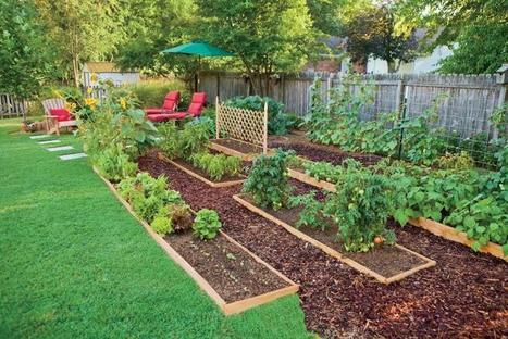 Edible Landscaping: How to Eat Your Yard   Soberanía Alimentaria   Scoop.it