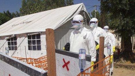 Ebola lijkt over hoogtepunt heen   NOS   Het Caraïbisch gebied, vergrijzing en wat extraatjes   Scoop.it