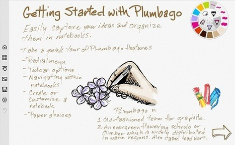Plumbago – UKEdChat.com | iEduc | Scoop.it