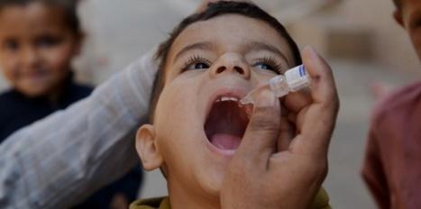 Polio: réunion d'urgence suite à de nouveaux cas | 16s3d: Bestioles, opinions & pétitions | Scoop.it