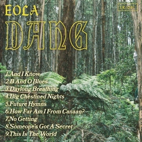 The name is EOLA, the album is DANG. | Stones Throw Records | MUSIQUE | Scoop.it