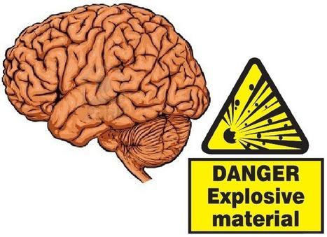 The Explosive Brain - Discover Magazine (blog)   Social Neuroscience Advances   Scoop.it