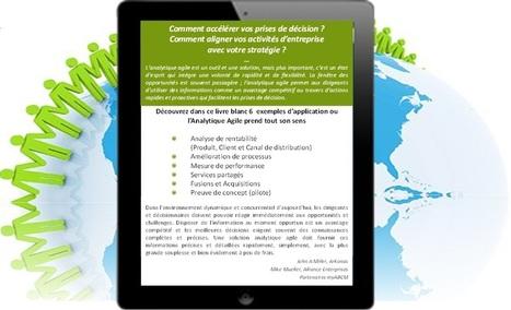 Livre Blanc : Analytique Agile & Calcul de Coûts | myAMS | Les Livres Blancs d'un webmaster éditorial | Scoop.it