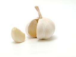 Top 10 Weight Loss Vegetables for Women - Torrid.tips | Torrid | Scoop.it