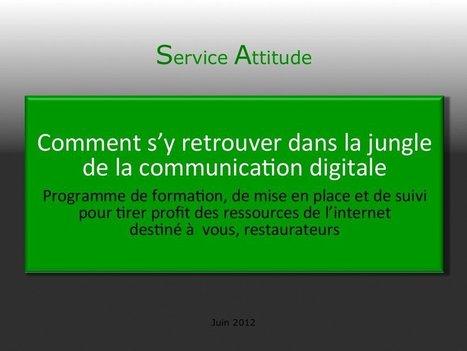 Programme Internet pour les restaurateurs | Service Attitude | domaine des séquoias | Scoop.it