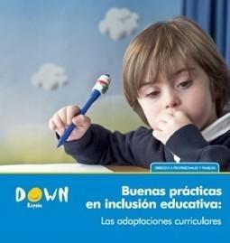 """Guía """"Buenas prácticas en inclusión educativa: las adaptaciones curriculares""""   Curriculum   Scoop.it"""