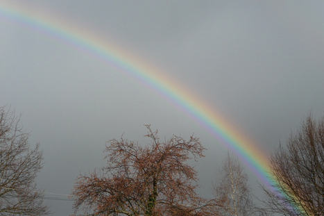 L'arc-en-ciel… | The Blog's Revue by OlivierSC | Scoop.it