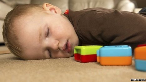 Regular naps are 'key to learning' | Uplifting Families | Scoop.it