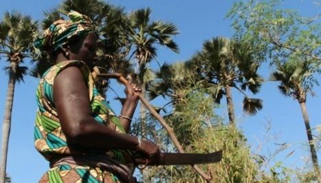 Sénégal, des femmes d'exception - Elles osent ! | Les femmes dans le monde | Scoop.it