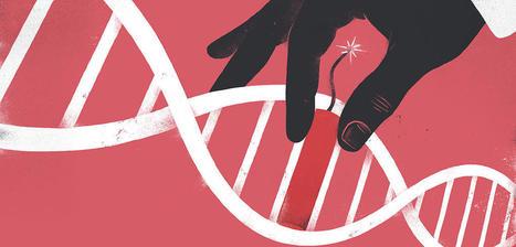 Quelle éthique pour les ciseaux génétiques ?   Chair et Métal - L'Humanité augmentée   Scoop.it