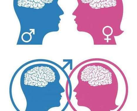 Study reveals the brain regulates social behavior differently in males and females | Psychotherapy | Scoop.it