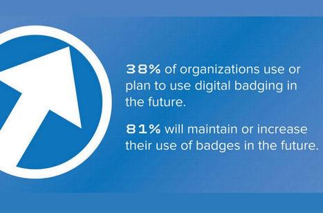 Survey Shows Growth Of Open Badges | Totara LMS | Digital Badges | Scoop.it