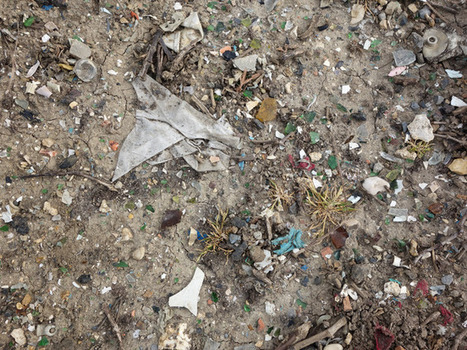 Garbage? Imagining a Better Future for the Soils of #Champagne   Vitabella Wine Daily Gossip   Scoop.it