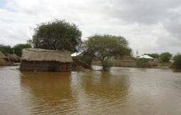 Floods displace thousands, destroy farms in Somalia's Middle Shabelle | Risques et Catastrophes naturelles dans le monde | Scoop.it