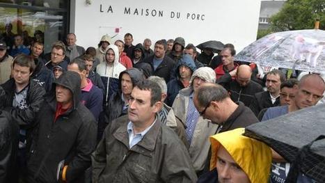 Crise du porc : nouvelle suspension du marché, table ronde lundi - Ouest France entreprises | Agriculture en Pays de la Loire | Scoop.it