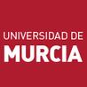 La Universidad de Murcia en la Red
