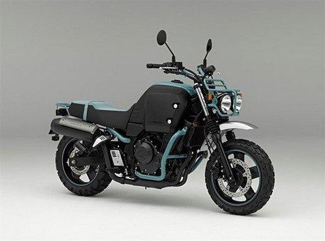 Honda Bulldog: un turismo diverso   Motori e Buon Cibo   Scoop.it