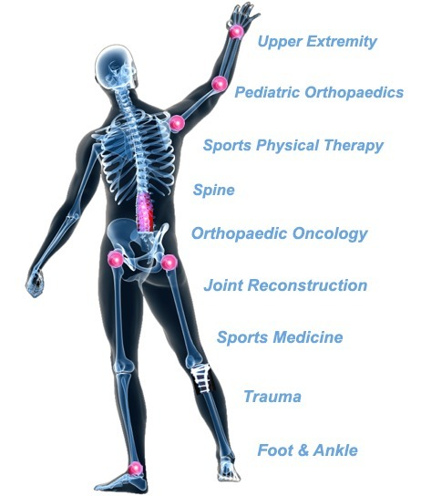 Carrollton Orthopaedic Clinic   OrthoTexas   Scoop.it
