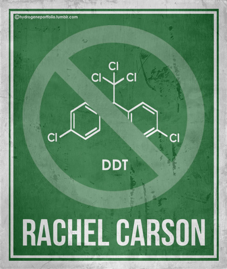 Minimal Posters - Six Women Who Changed Science.... | Women and Technology | Scoop.it