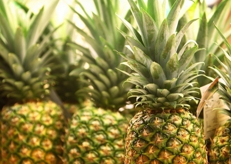 Surprising Cancer-Fighting Benefits of Pineapple Enzyme | The Basic Life | Scoop.it