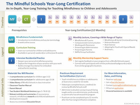 Mindful Schools Certification | Integrative Medicine | Scoop.it
