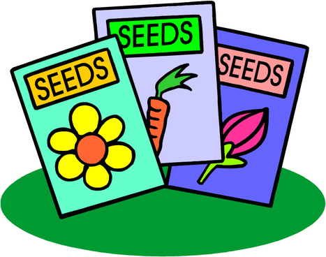School Garden Lesson Plan: Journey to the Center of a Seed | School Gardening Resources | Scoop.it