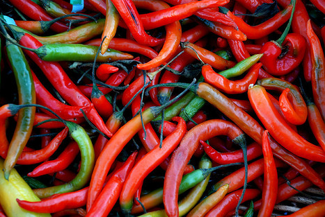 Spice: Eating In Pain – Urban Times | @FoodMeditations Time | Scoop.it