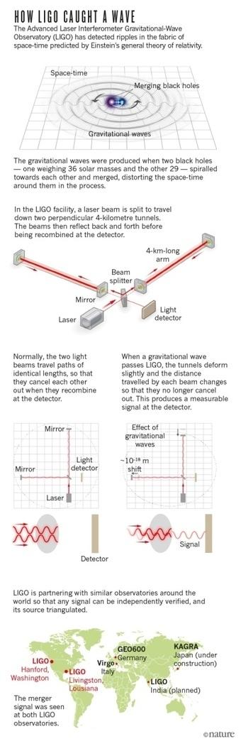 Einstein's gravitational waves found at last | Cosmology | Scoop.it