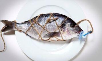 Fotografia, il cibo è questione di punti di vista | Italica | Scoop.it