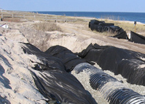 NC State News :: NC State News and Information » Researchers Devise Hidden Dune Filters To Treat Coastal Stormwater Runoff | Research from the NC Agricultural Research Service | Scoop.it