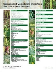 Suggested Vegetable Varieties for the Home Garden | Vegetable Gardening Resources | Scoop.it