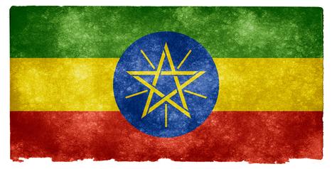 ✪ Éthiopie : Un paysage médiatique peu à peu décimé   Actualités Afrique   Scoop.it