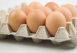 Are #eggs from #humanely-treated hens #safer to eat? - Nutrition Action | Nutrition Today | Scoop.it