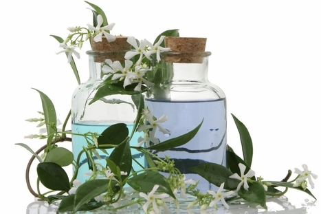 10 Benefits of Using Pure and Natural Essential Oil of Lavender - Naturesnaturalindia's Blog | Natures Natural India - Bulk Essential oils Manufacturer and Suppliers | Scoop.it