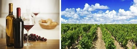 Primeurs de Bordeaux 2014: Les bonnes affaires | Autour du vin | Scoop.it