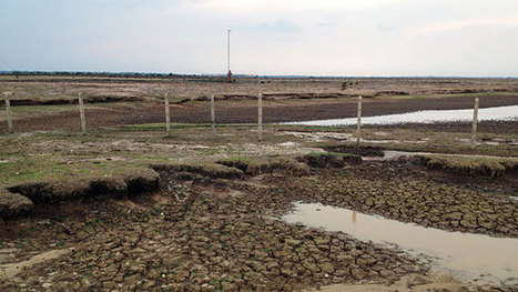Climate fears over Colombia drought | Sustain Our Earth | Scoop.it